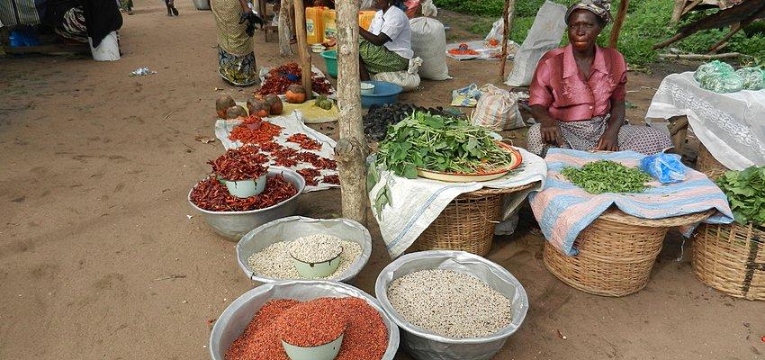 impact sur la vie des togolais-covid19